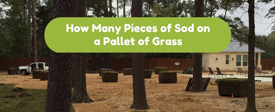 How Many Pieces of Sod on a Pallet of Grass