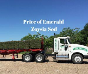 Price of Emerald Zoysia Sod