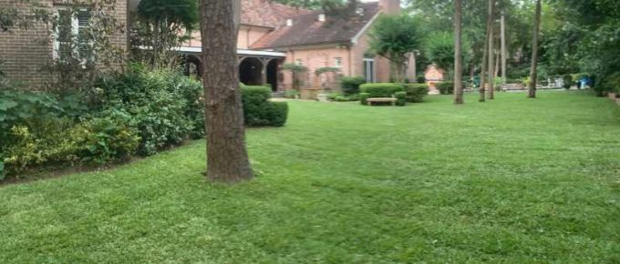 Average Cost to Install Grass Sod - Houston Grass